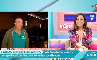 La Cabra Verata en «A esta Hora» de Canal Extremadura
